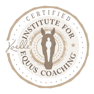 Equus Certification badge
